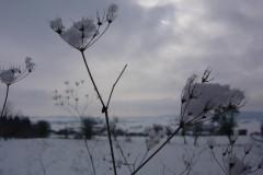 hessen-schnee-winter-himmel-snow