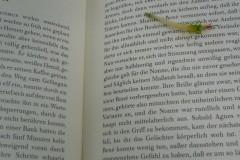 indien-mango-ustinov-lektuere-book