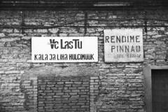 tallinn-mauer-wall-estonia-schild