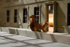 eingang-lichtblick-squirrel-eichhörnchen-oachkatzl