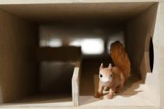 tiefgarage-squirrel-eichhörnchen-oachkatzl-underground