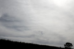 neige-baum-schief-himmel-wolken