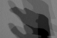 kienholz-shadow-schatten-führer