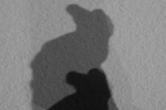 kienholz-shadow-schatten-hahn