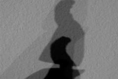 kienholz-shadow-schatten-henne