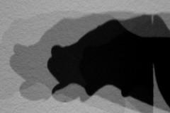 kienholz-shadow-schatten-wau