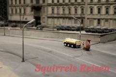 titel-squirrels-reisen