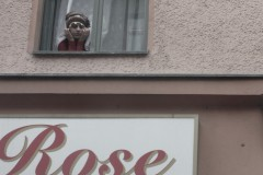 frau-fenster-rose