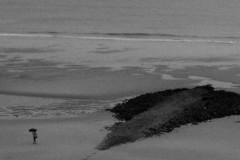 regenschirm-strand-buhne-umbrella-beach walk-rain-wangerooge