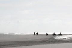 strand-ausritt-alles glück dieser erde liegt auf dem rücken der pferde