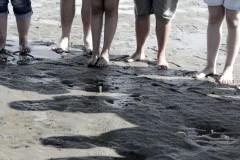 watt-beine-mudflat-legs